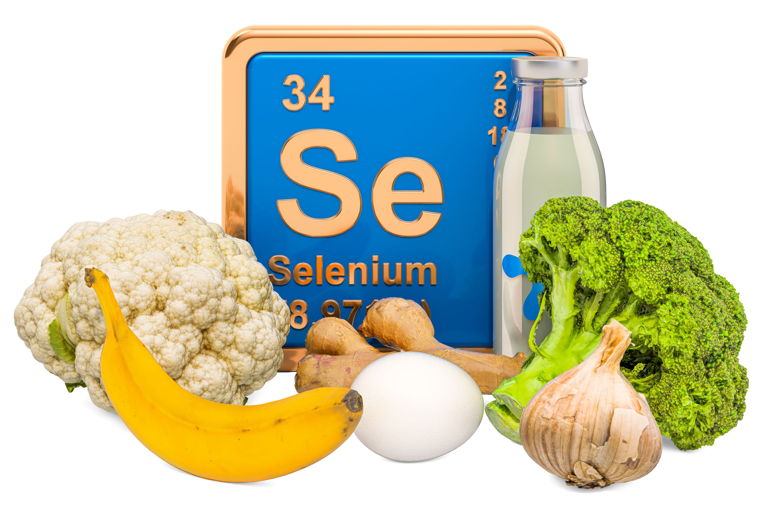 Foods Highest in Selenium, 3D rendering